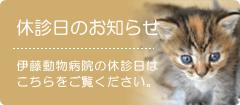 伊藤動物病院休診日のお知らせ